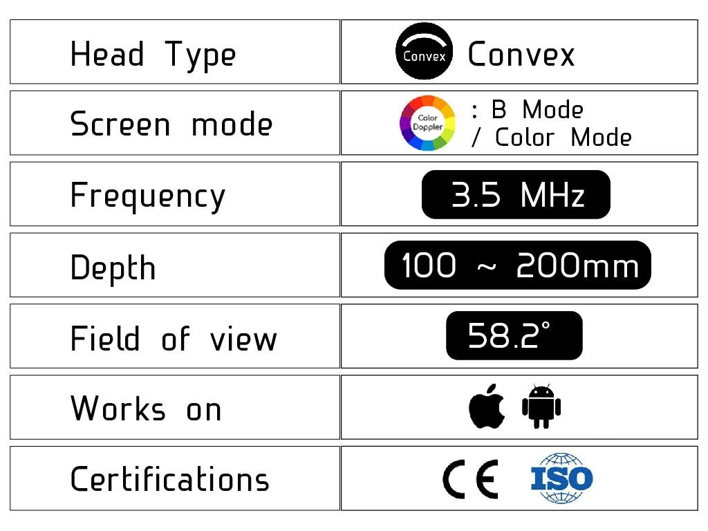 Convex Ultrasound Scanner