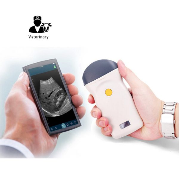 Veterinary wireless ultrasound
