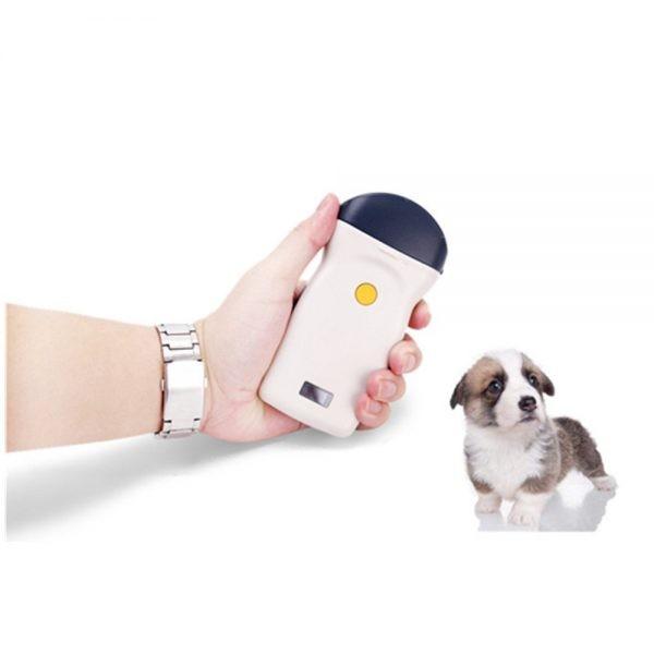 Veterinary wireless ultrasound scanner